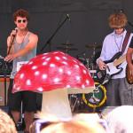 Stud Mushroom 2011 by TVS